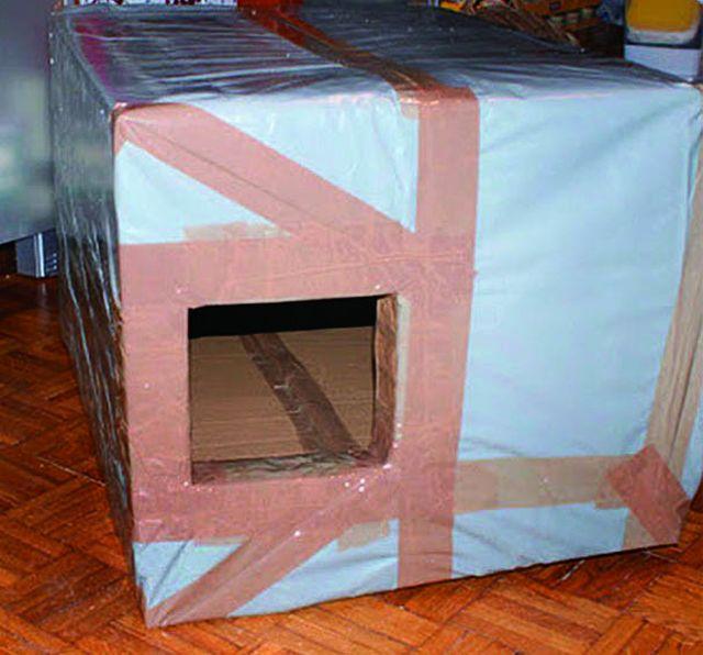 Уличные зимние домики для кошек