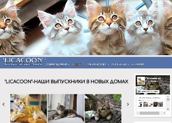 Скрин сайта питомника LICACOON