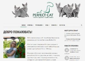 Скрин сайта питомника Perfect Cat