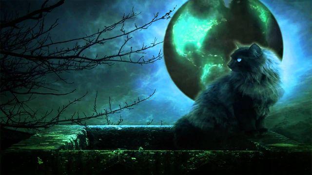 Кот на балконе на фоне луны